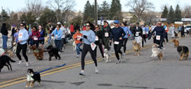 The Dog Jog is on April 28th and Pet Pangaea is a sponsor.